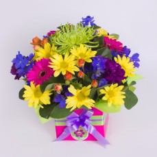 Colourful mixed seasonal box arrangement.