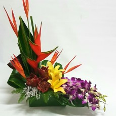 after something a little more special for your beautiful mum, then you can go past this modern tropical arrangement.
