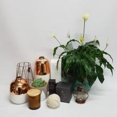 gift-ware